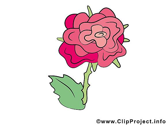Rose clip arts gratuits – Fleurs illustrations
