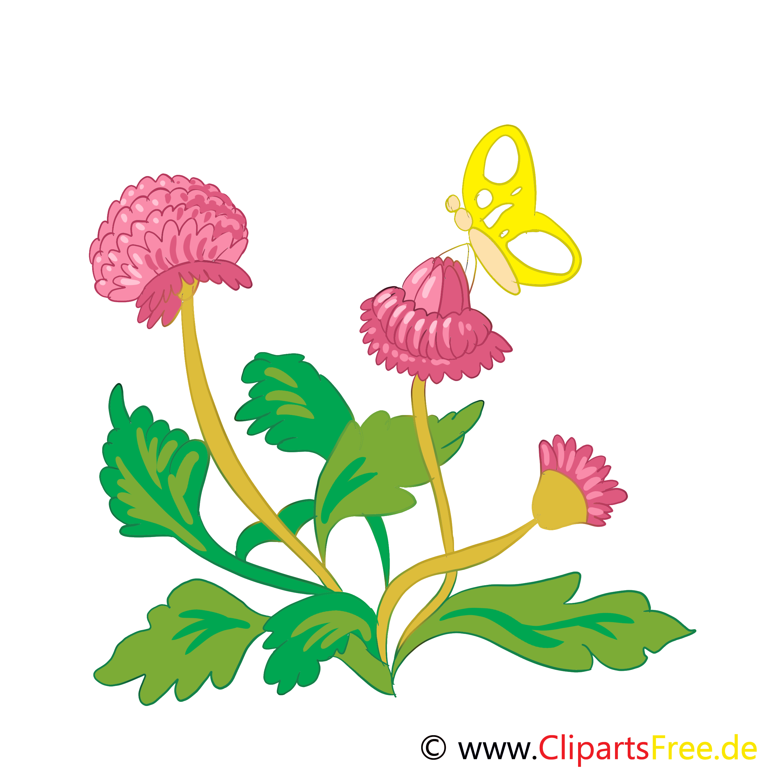 Trèfle clipart – Fleurs dessins gratuits