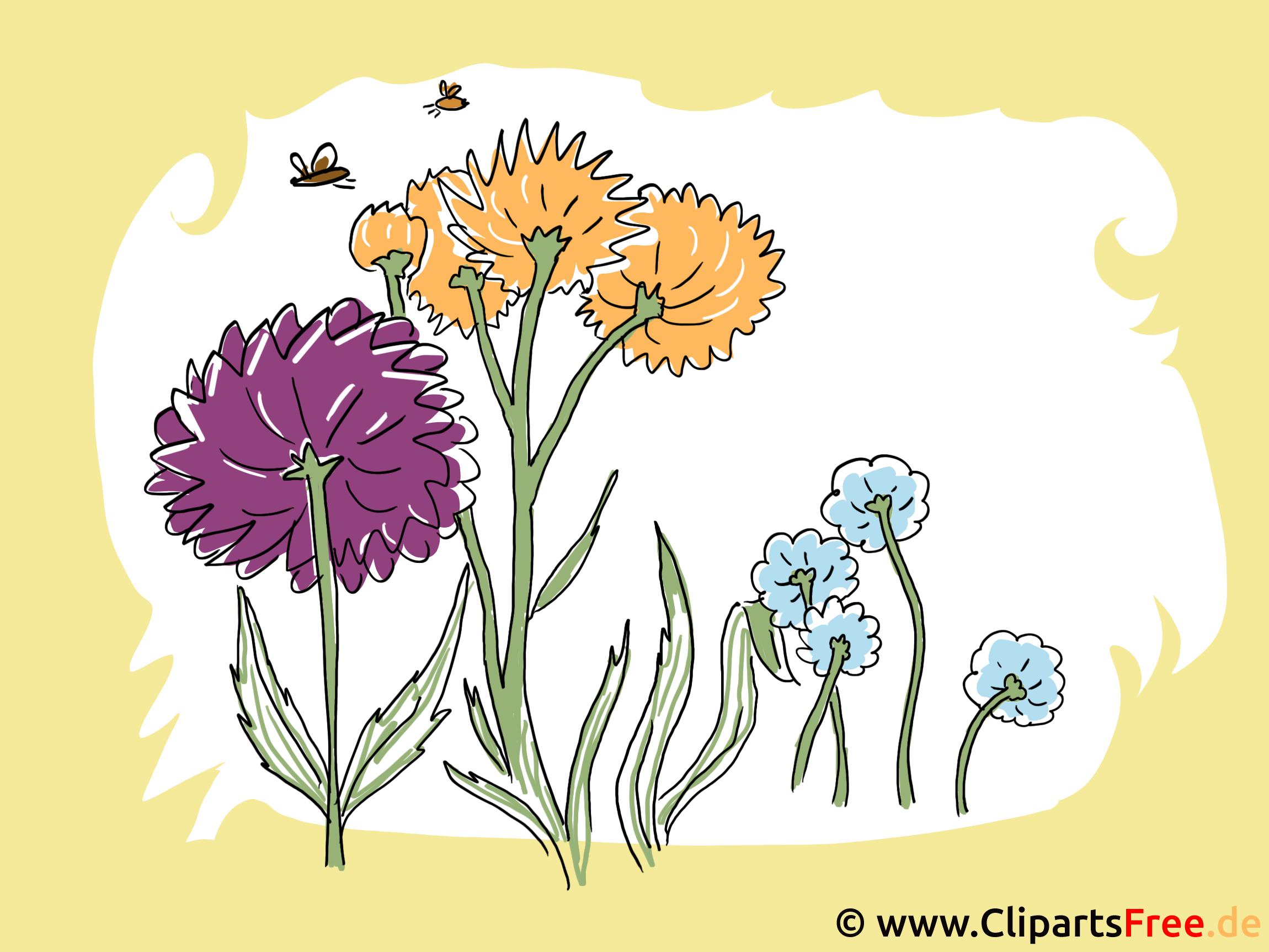 Fleurs image gratuite - Fonds d'écran illustration