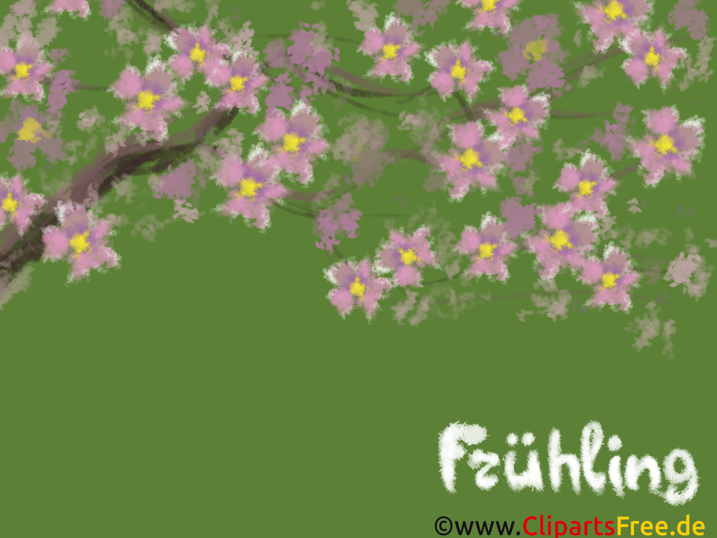 Floraison images gratuites – Fonds d'écran gratuit