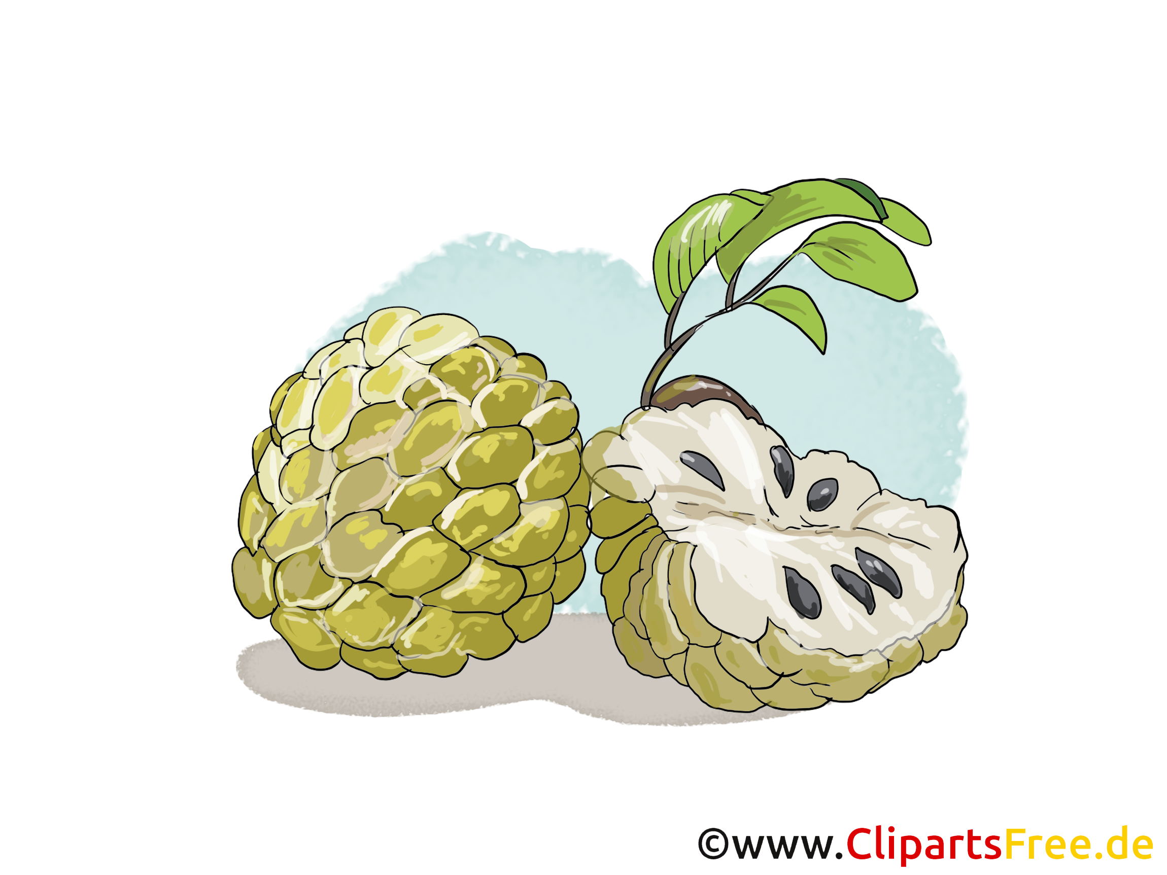 Cherimoya images - Fruits dessins gratuits