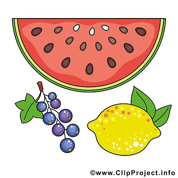 Fruits dessin à télécharger clip arts gratuits