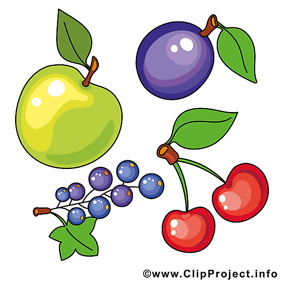 Fruits illustration gratuite à telécharger clipart
