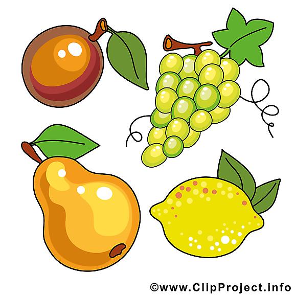 Fruits images gratuites clipart à télécharger