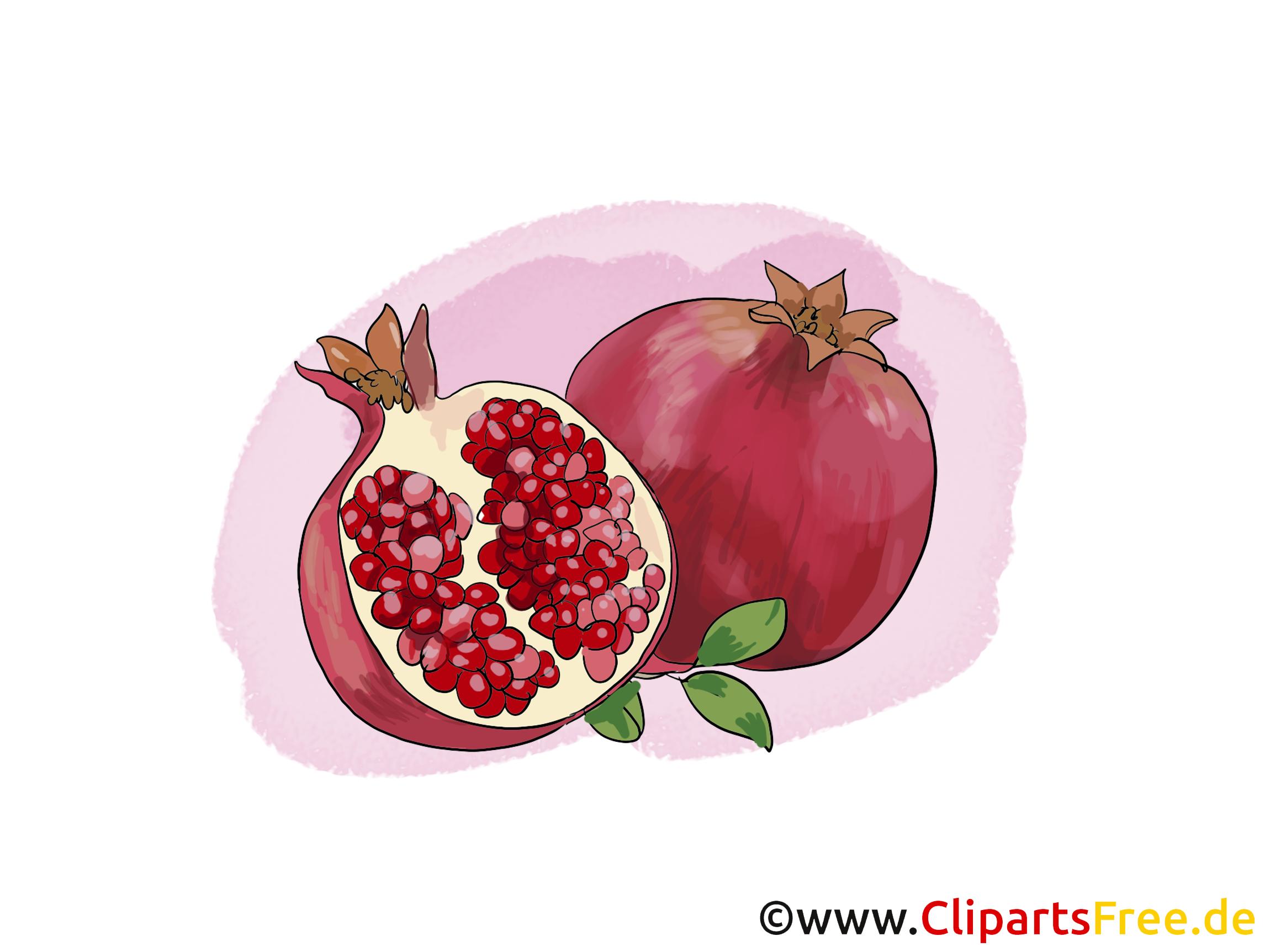 Grenade dessin gratuit - Fruits image
