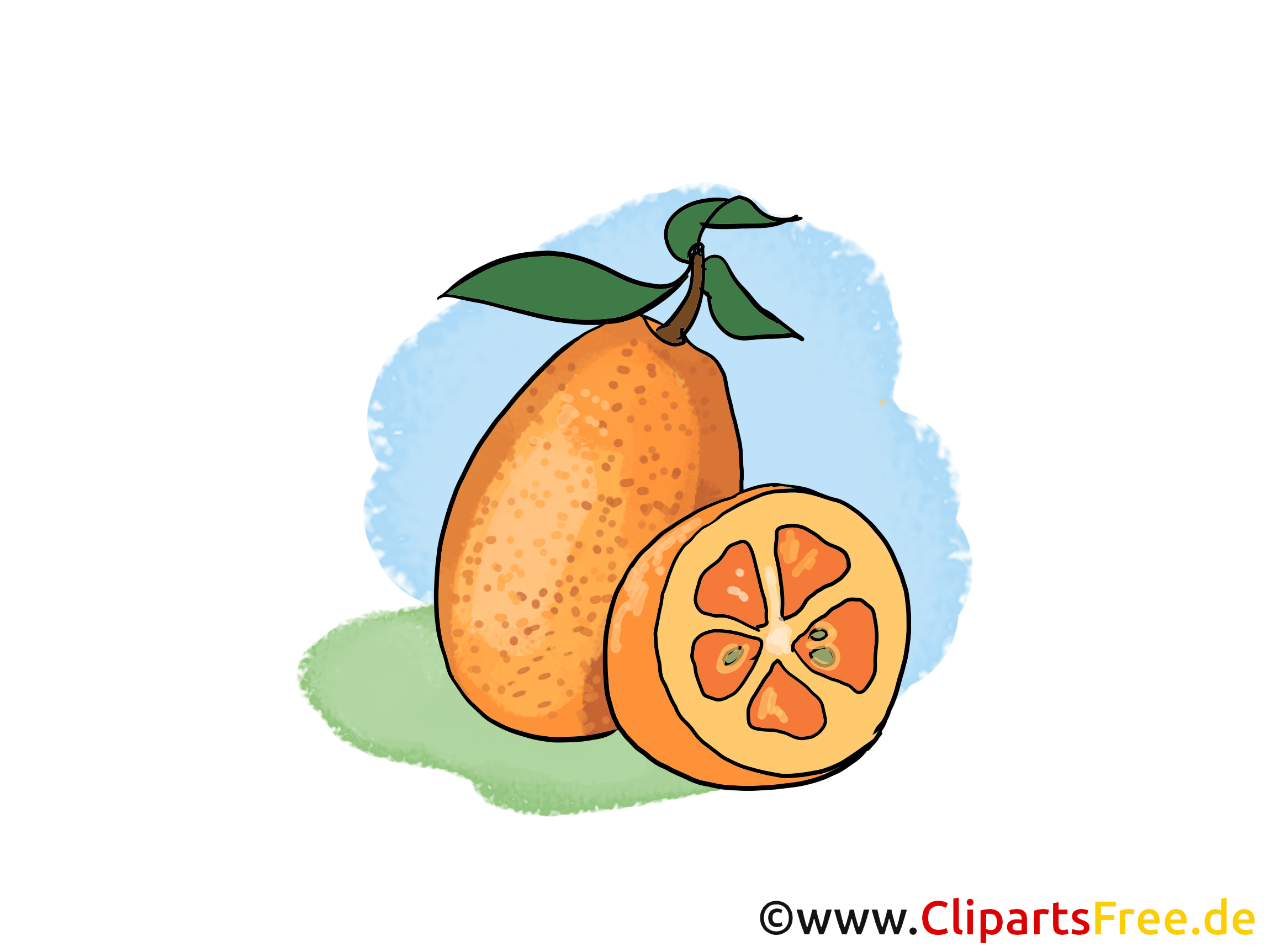Oranges dessin - Fruits clip arts gratuits