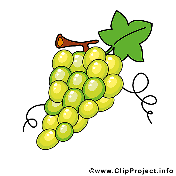 Raisin clipart - Fruits dessins gratuits