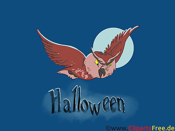 Halloween dessin -  Hibou cliparts à télécharger