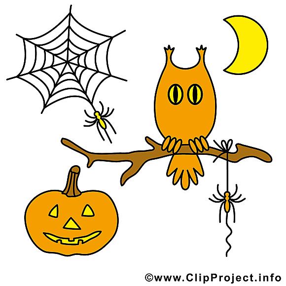 Hibou dessin - Halloween à télécharger