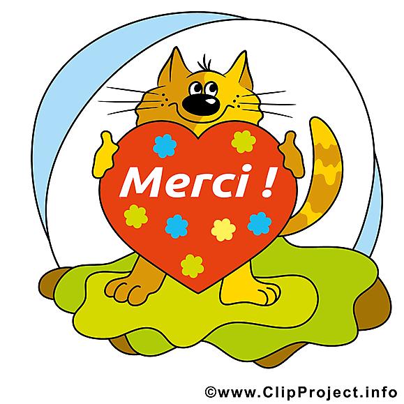 Chat coeur illustration gratuite merci clipart merci - Images coeur gratuites ...