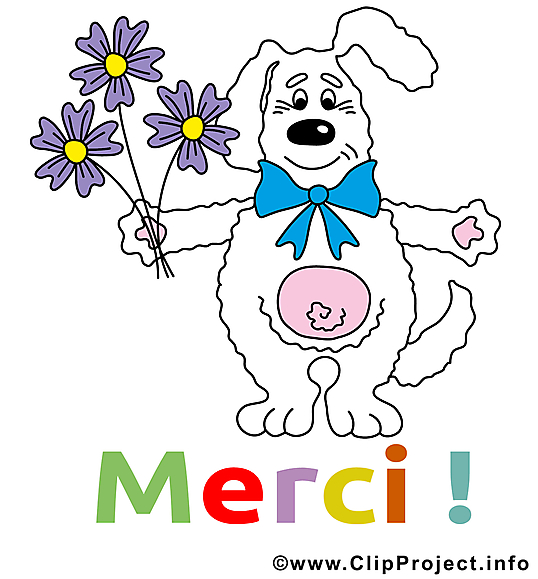 Lièvre illustration - Merci images