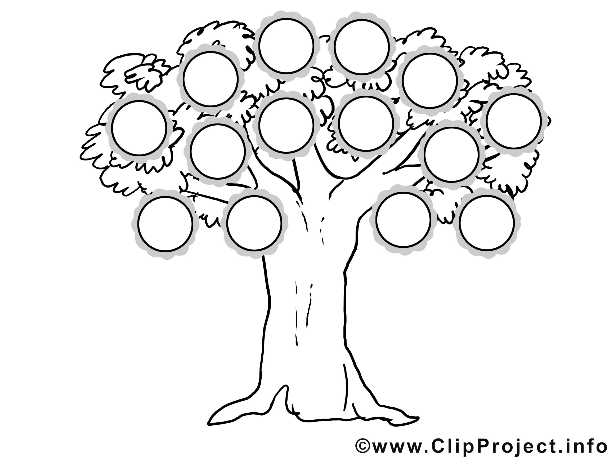 Dessin gratuit arbre généalogique à colorier - Modèles ...
