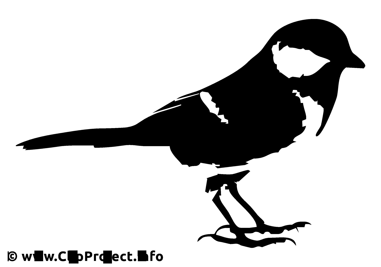 Bouvreuil illustration - Noir et blanc images