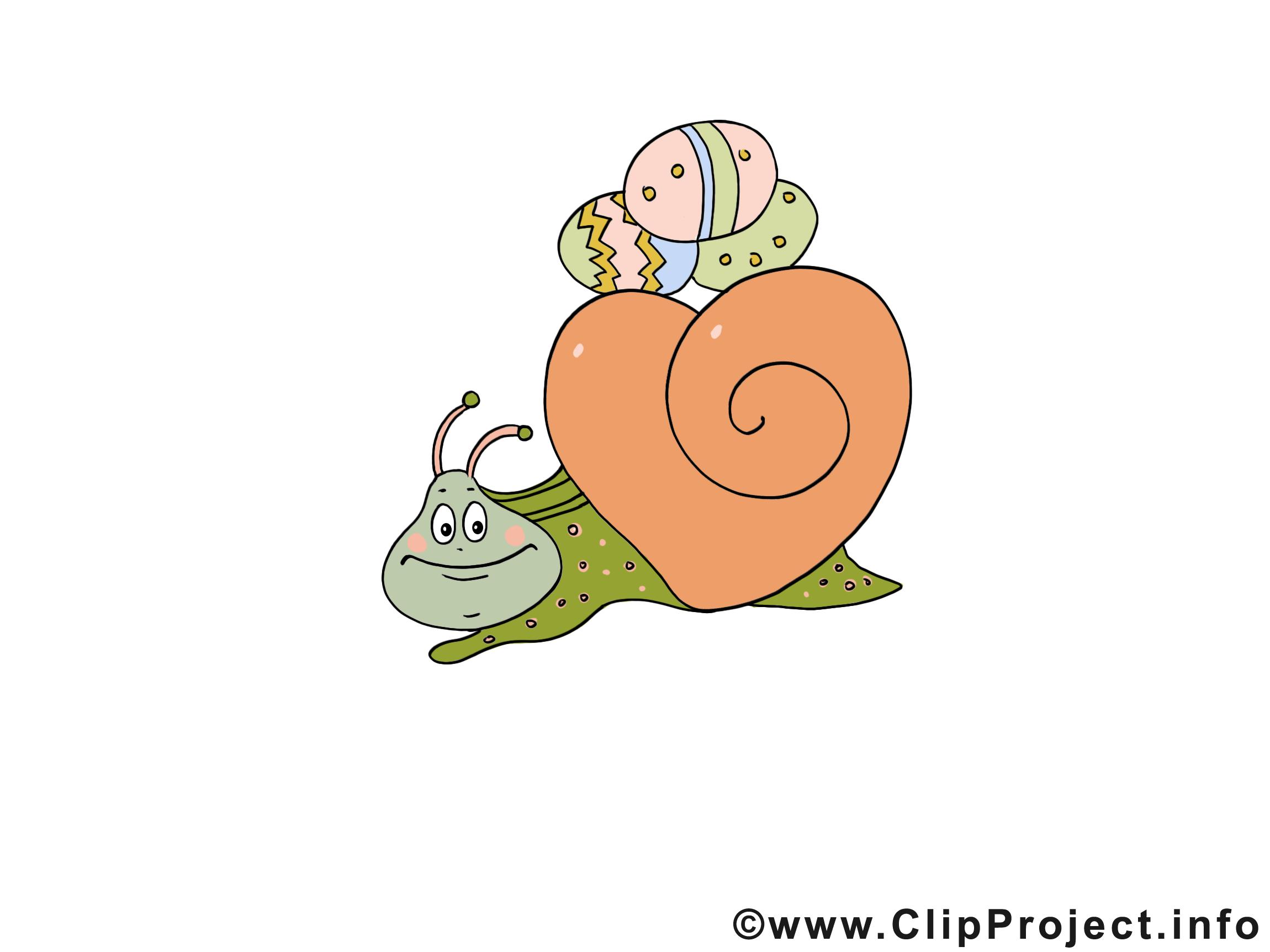 Escargot illustration - Pâques images