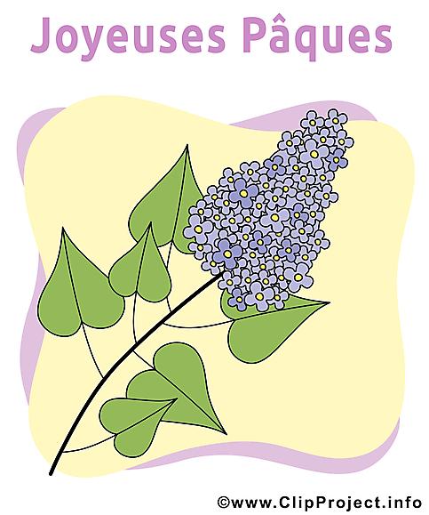 Lilas illustration - Pâques images