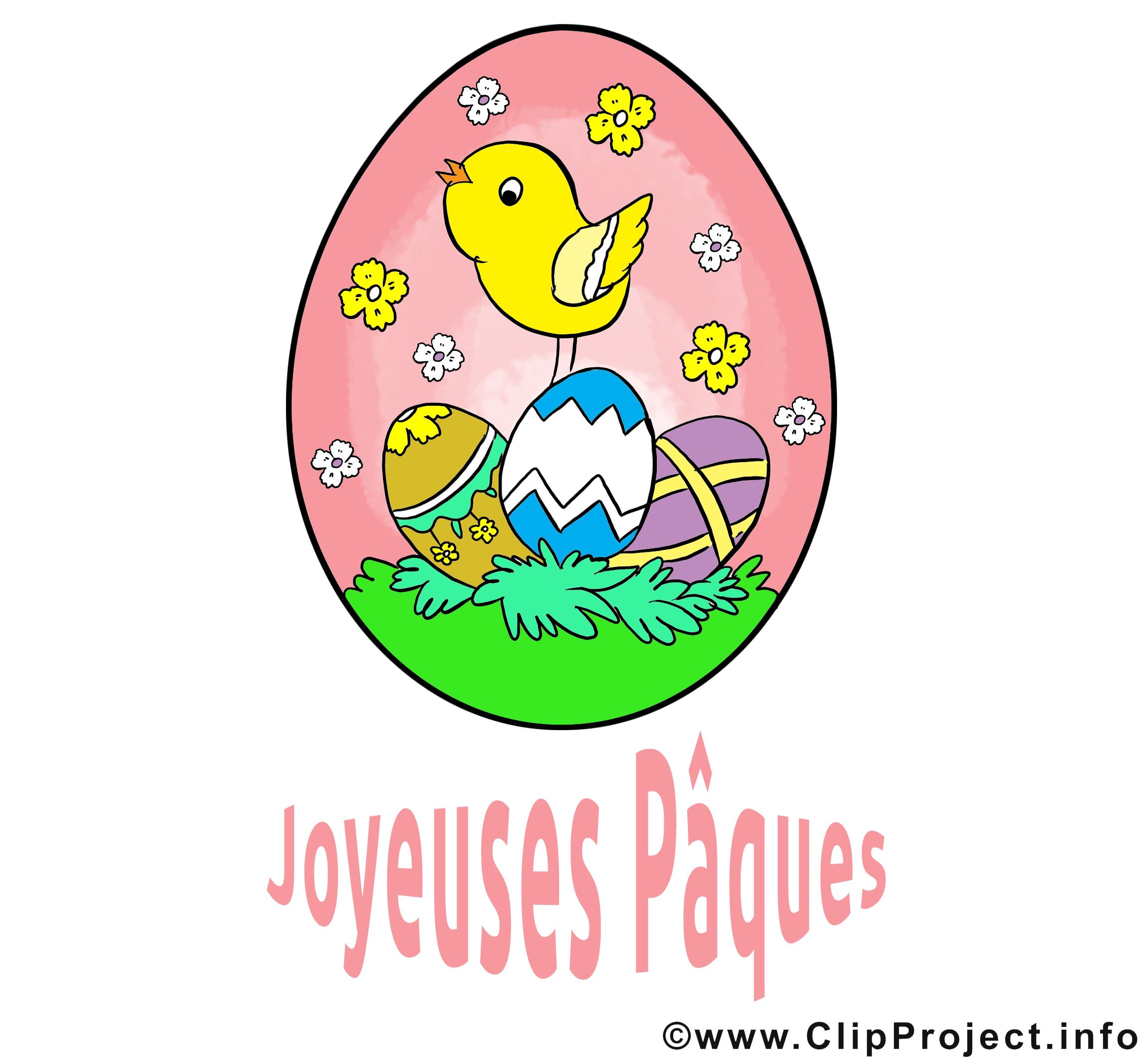 Poussin pâques image à télécharger gratuite