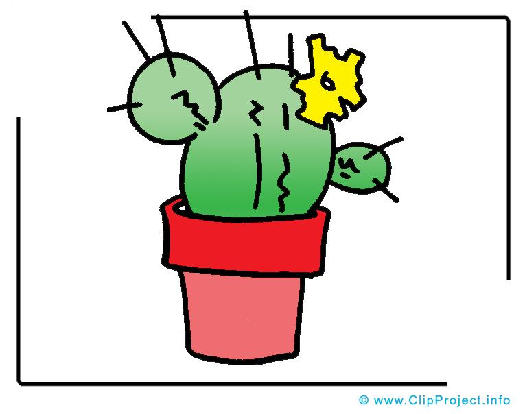 Cactus image gratuite - Plante cliparts