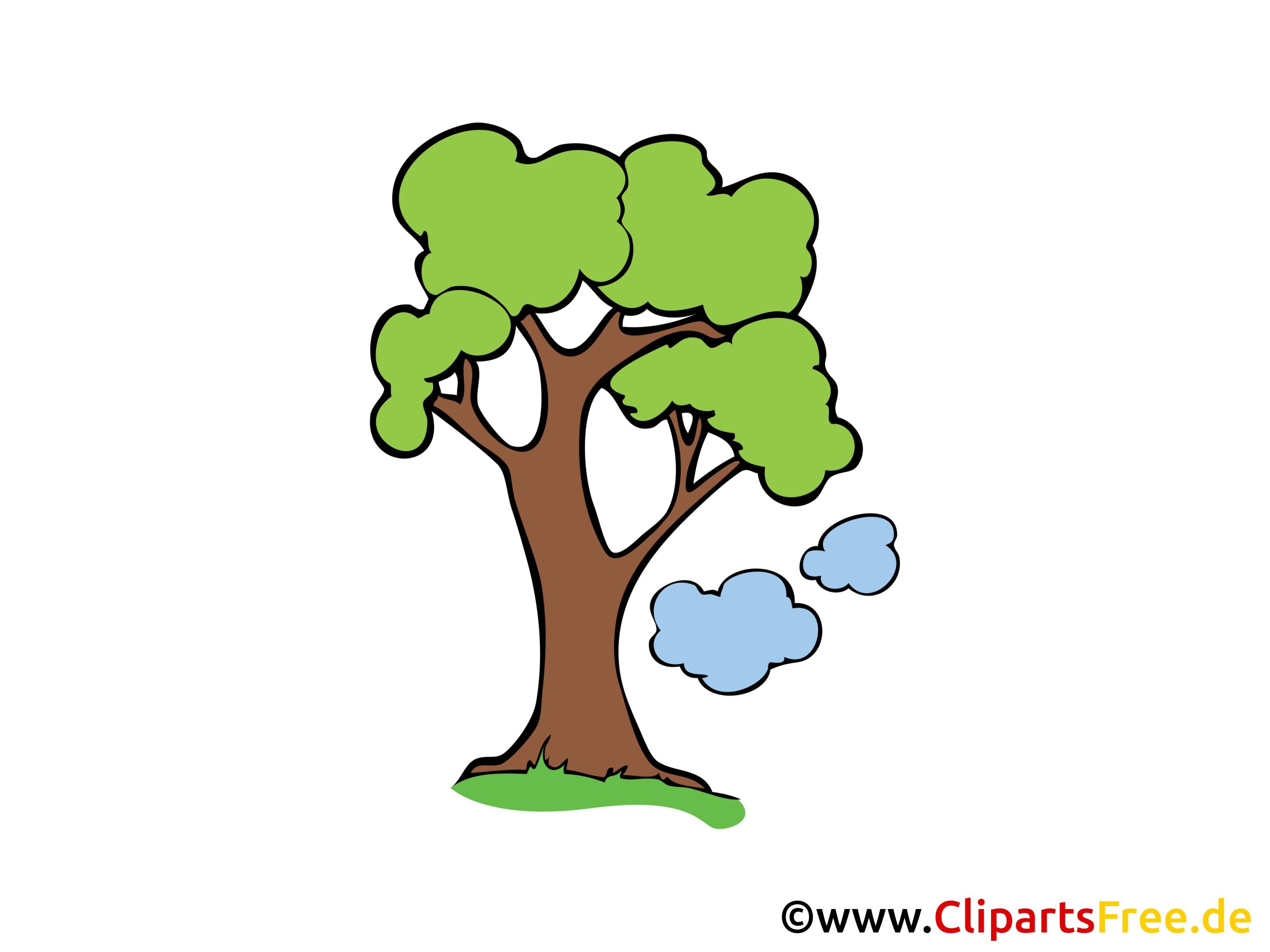 Chêne dessin gratuit - Arbre clip arts gratuits