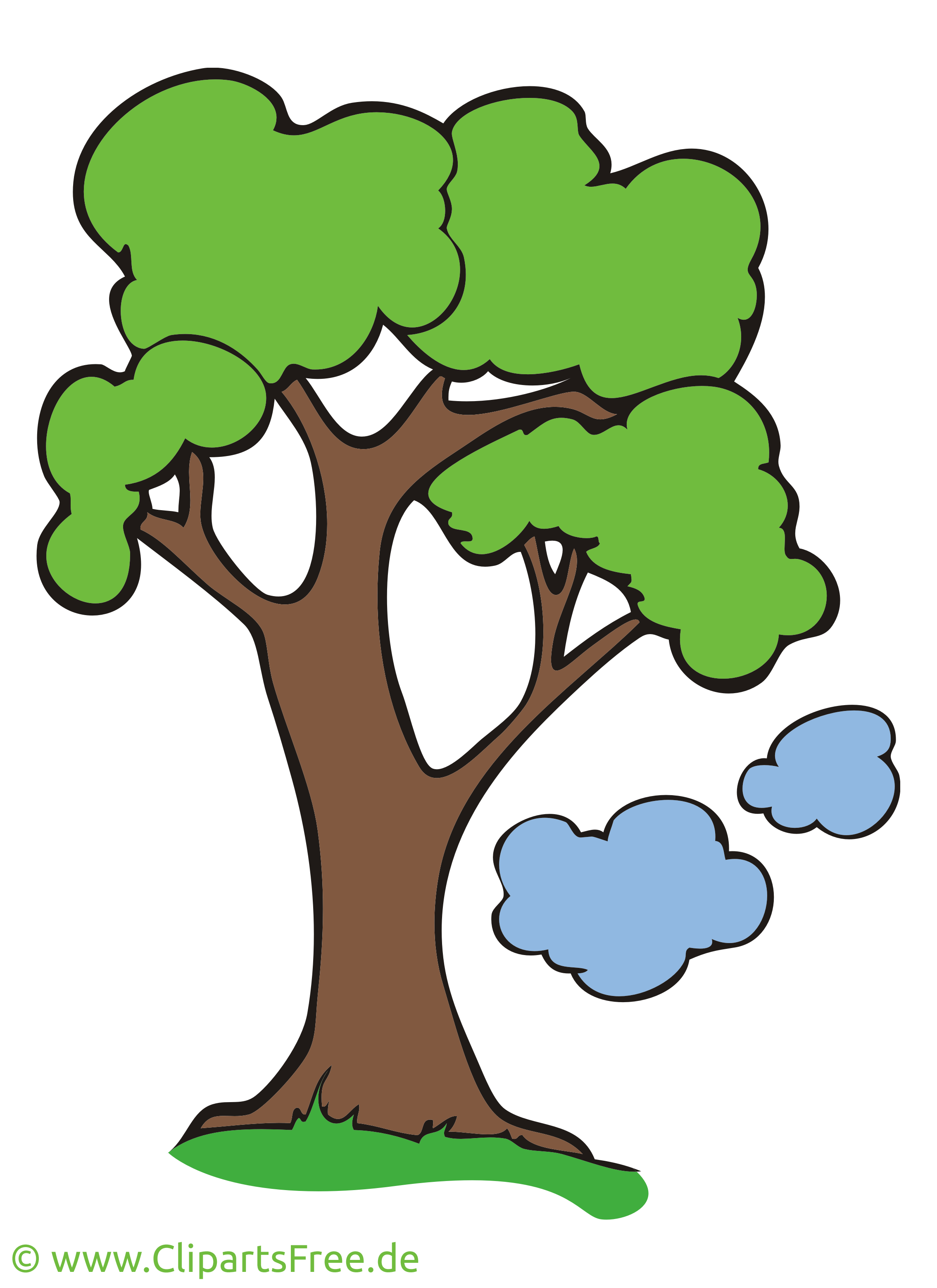 Chêne illustration - Arbre images gratuites