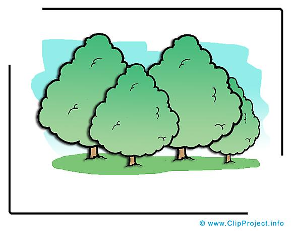 Forêt dessin gratuit -Arbres  image gratuite