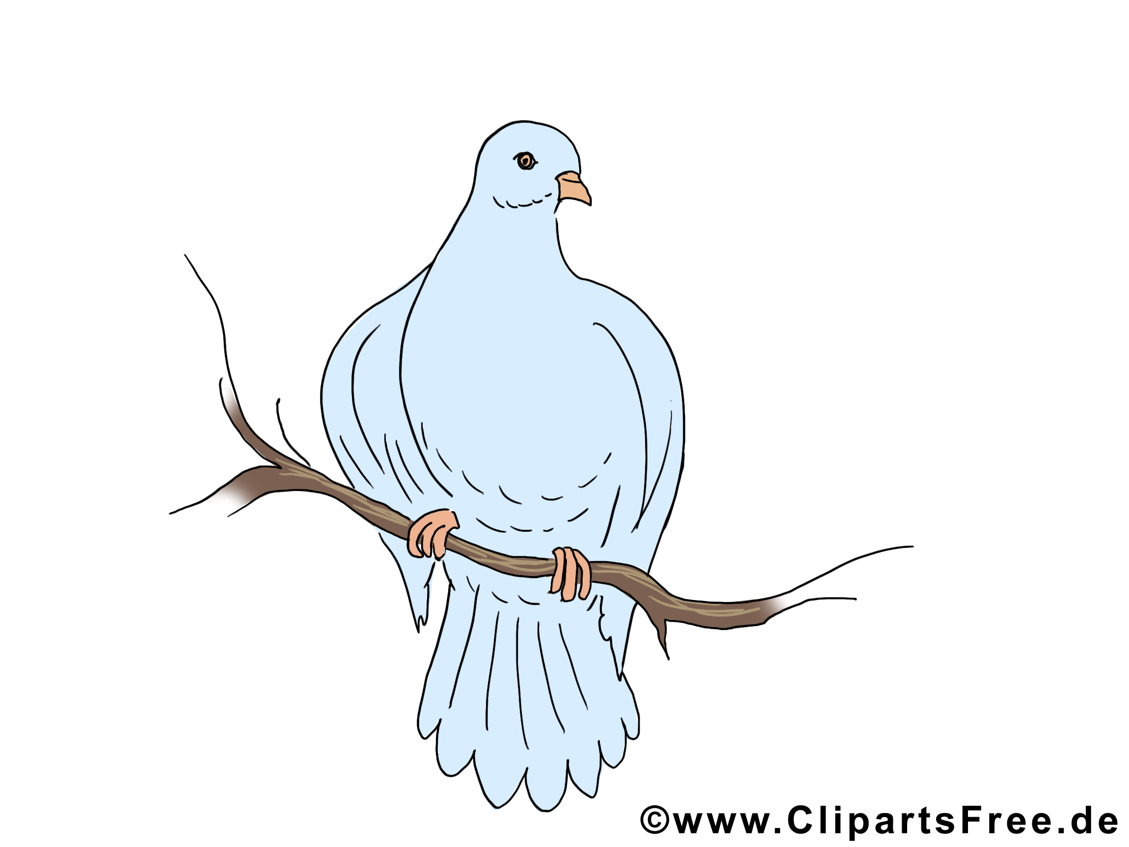 Branche illustration - Pentecôte clipart