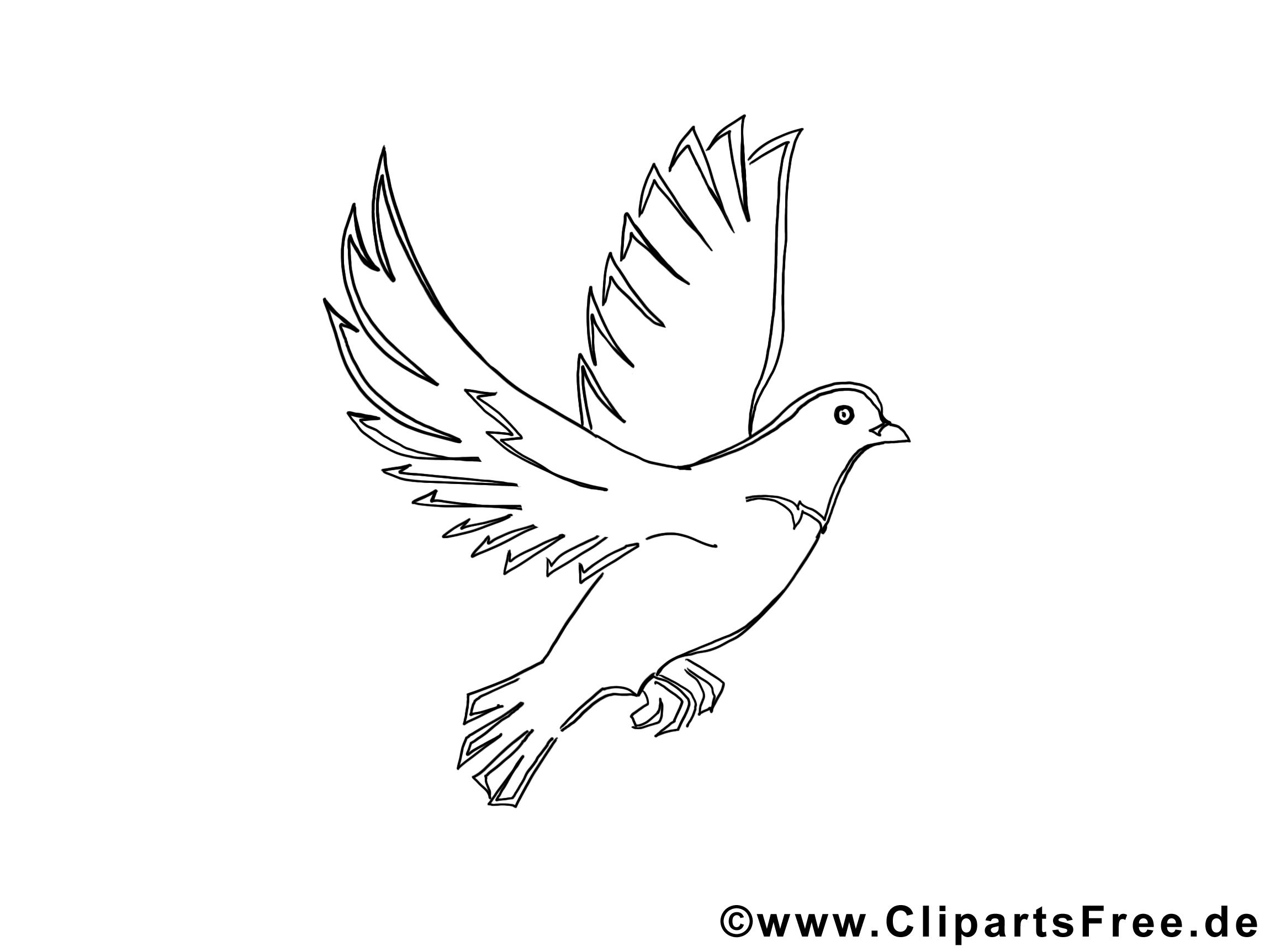 Colombe cliparts à colorier - Pentecôte images gratuites