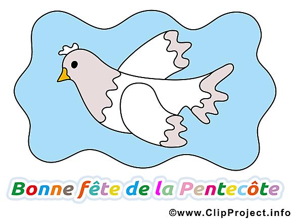 Colombe image gratuite Pentecôte clipart