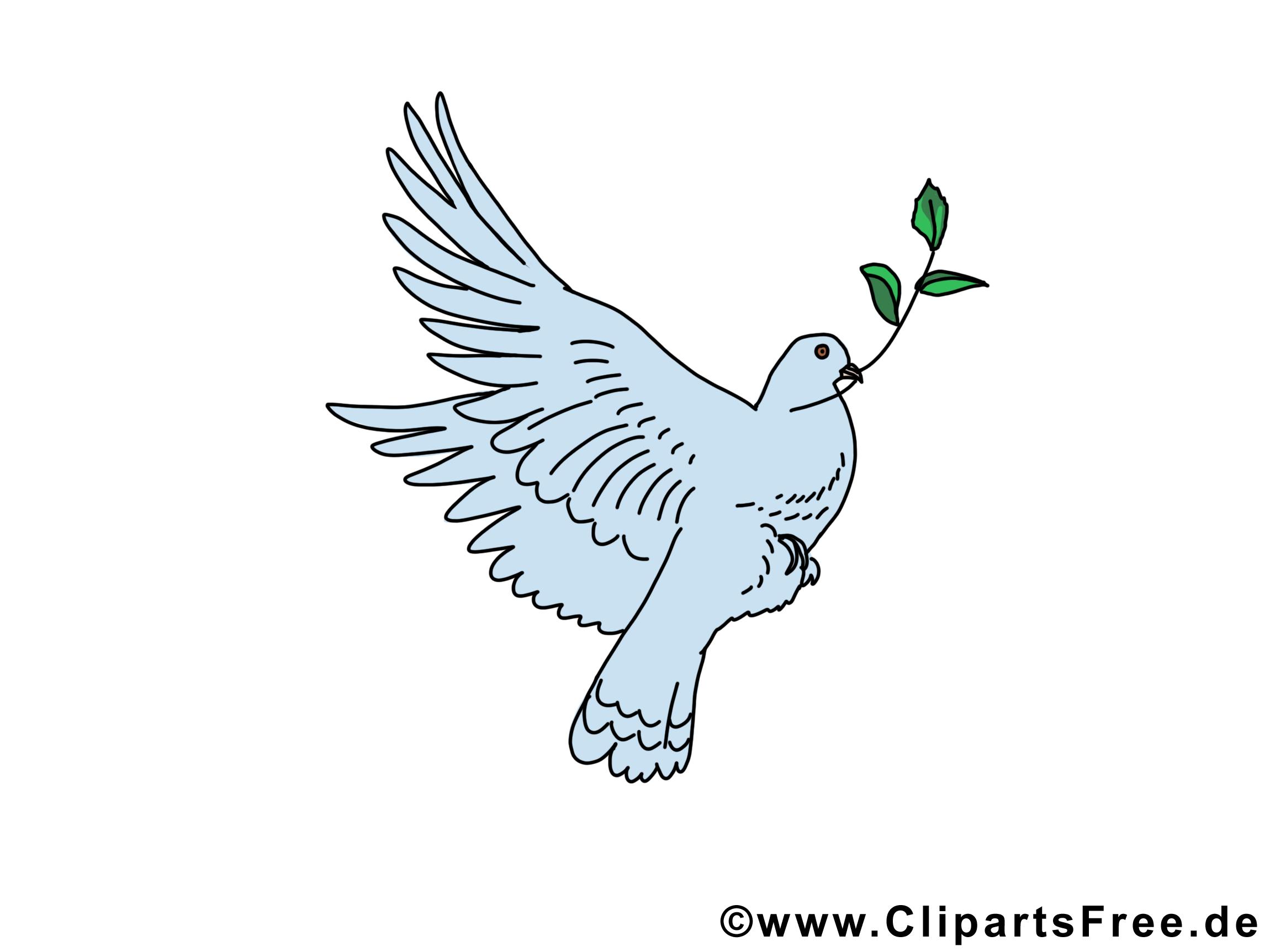 Feuille d'olivier dessin - Pentecôte images