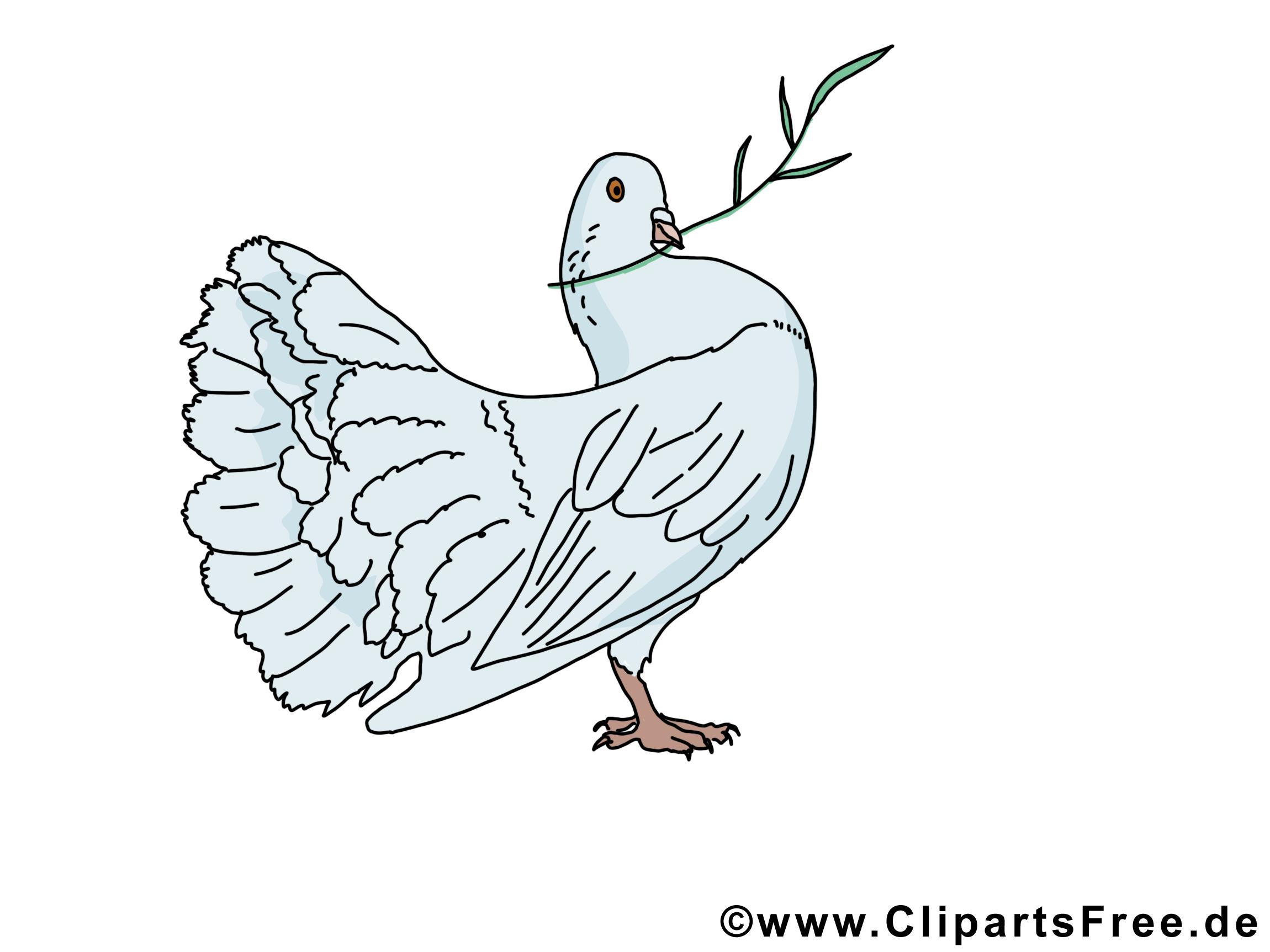Feuille d'olivier images - Pentecôte clip art gratuit