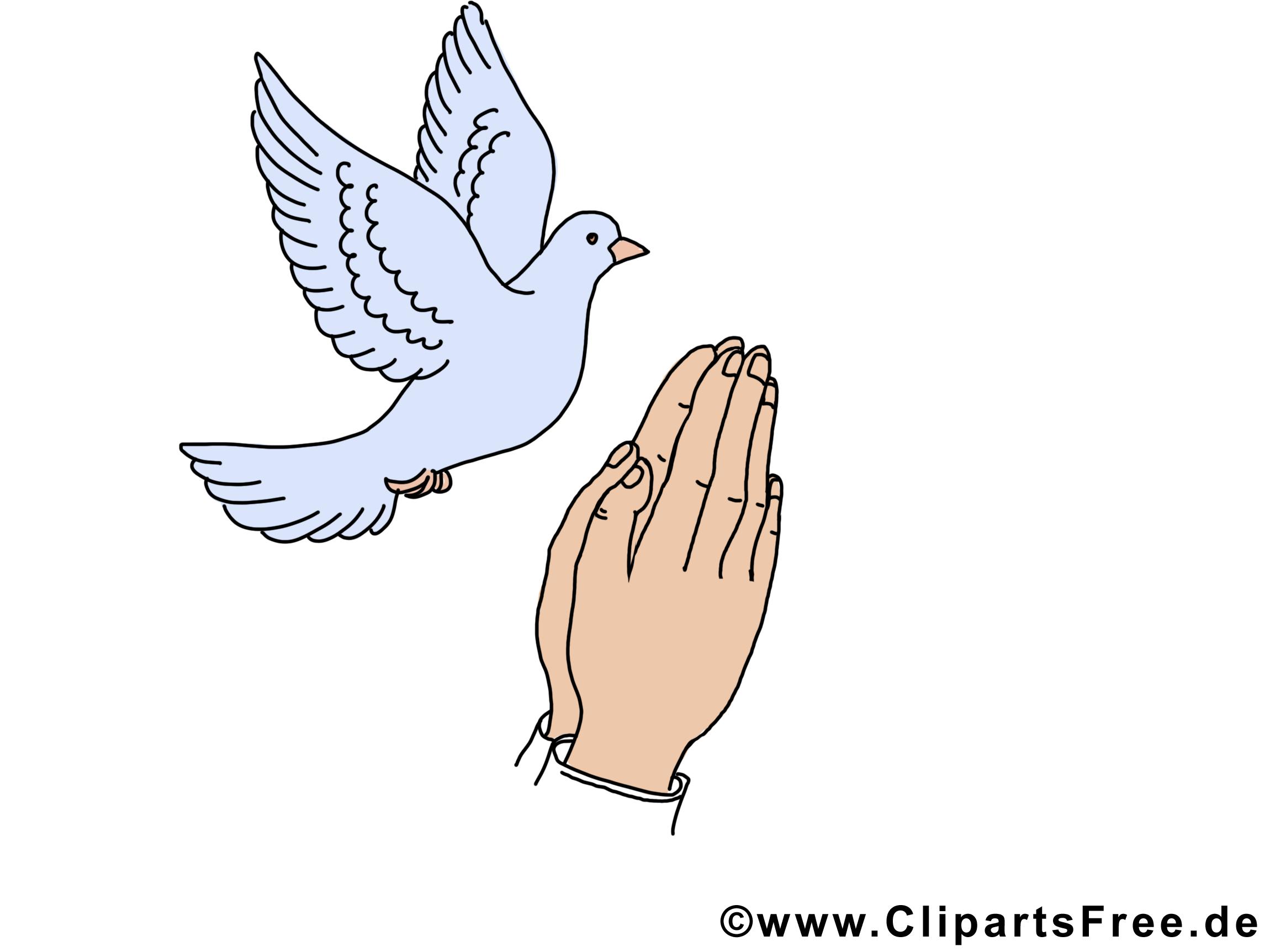 Mains colombe images - Pentecôte dessins gratuits
