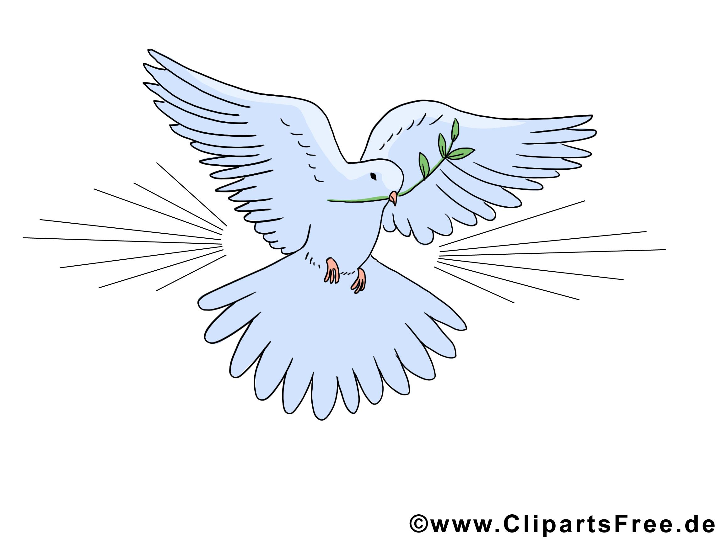 Pigeon clipart gratuit - Pentecôte images