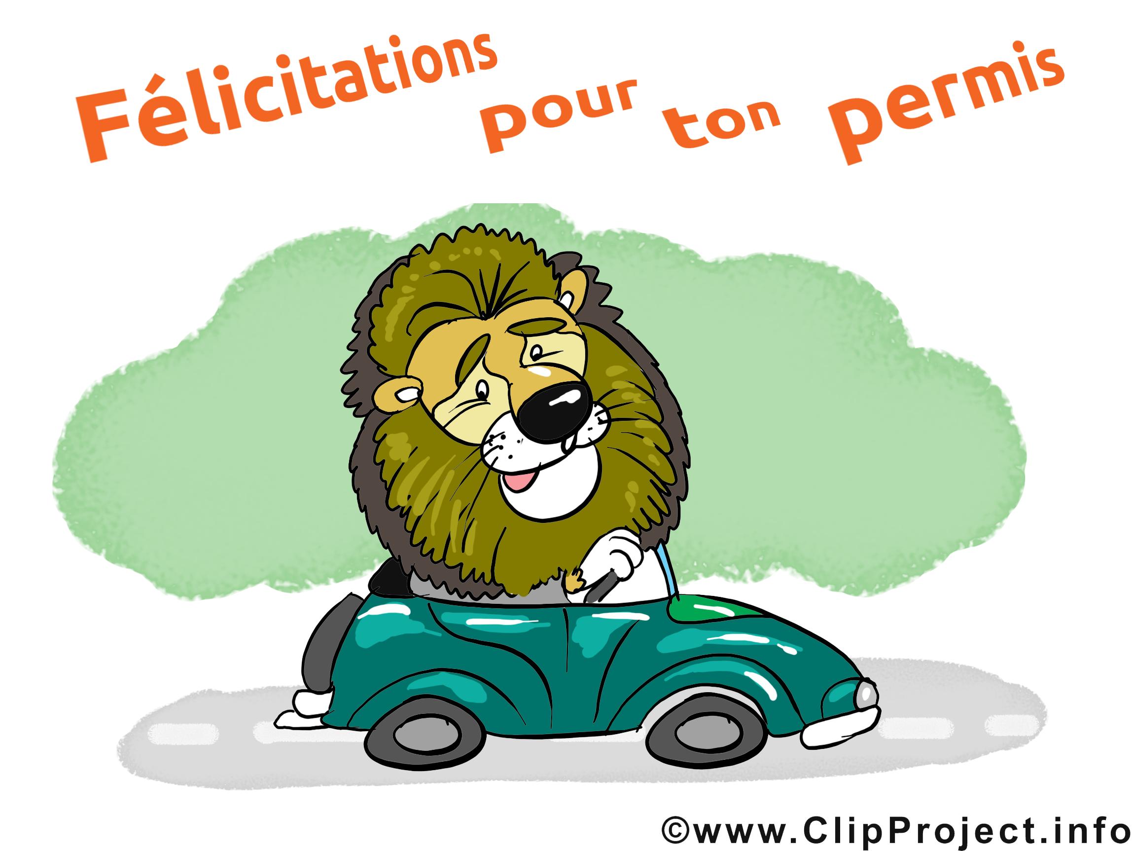 Lion jolie carte - Voiture images gratuites