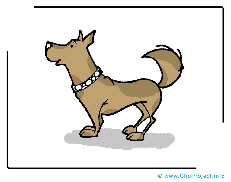 Animal chien image à télécharger gratuite
