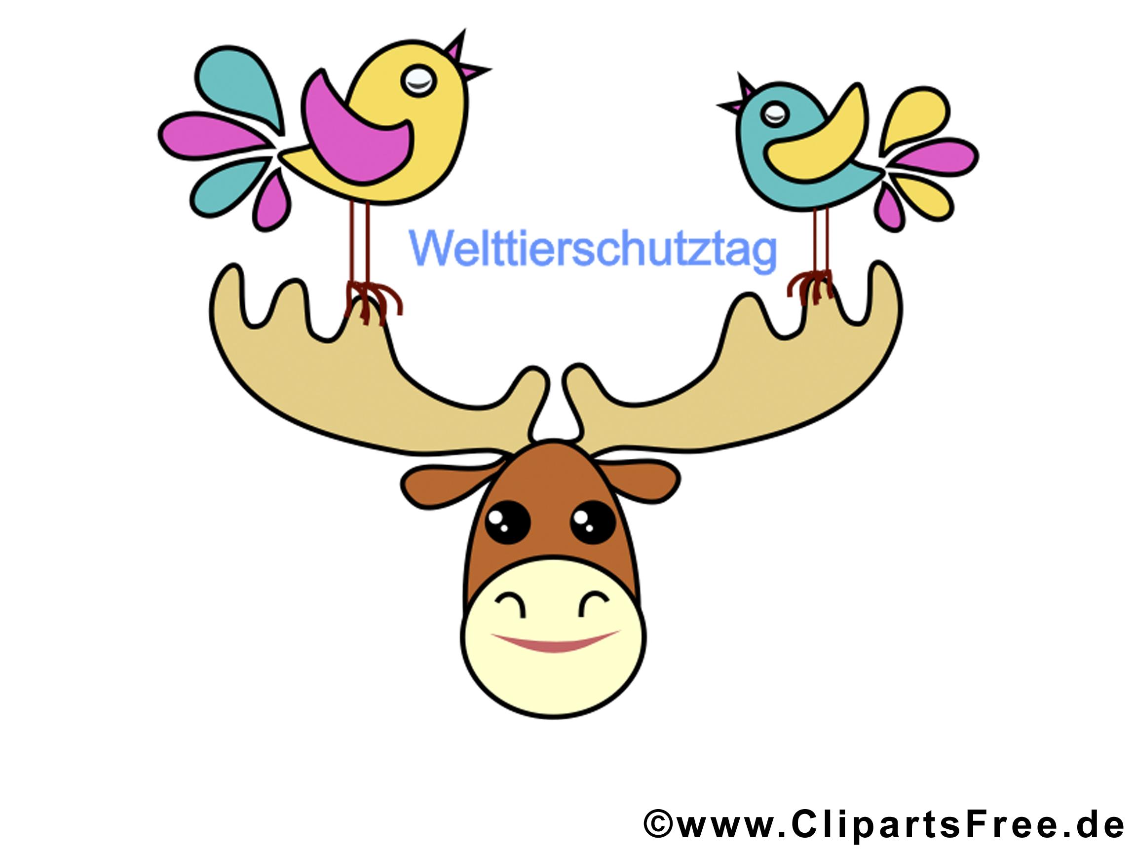 Cerf image gratuite – Animal clipar