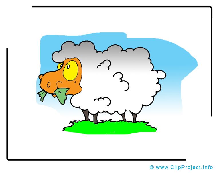 Dessin mouton – Animal clip arts gratuits