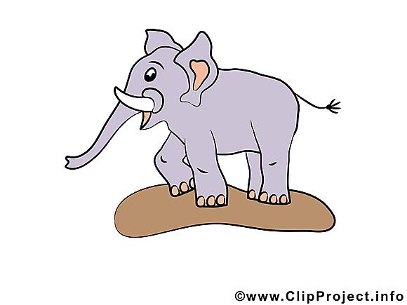 Éléphant clipart gratuit – Animal images