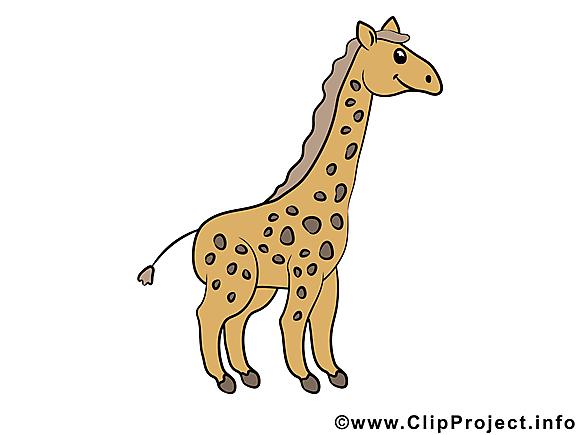 Girafe image – Animal images cliparts