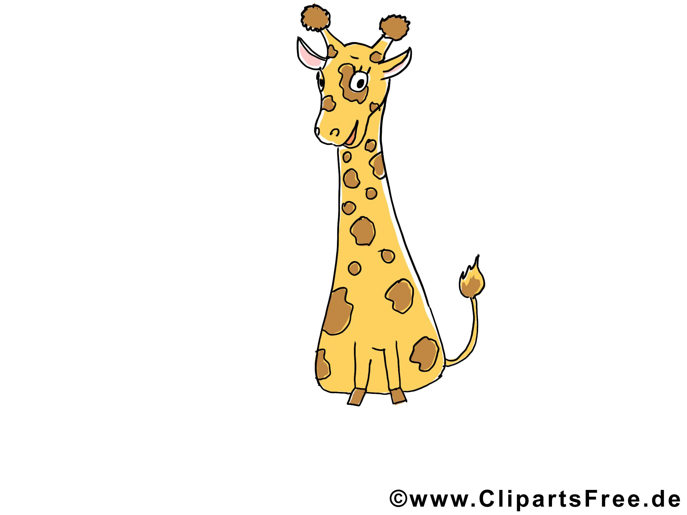 Girafe image gratuite – Animal illustration