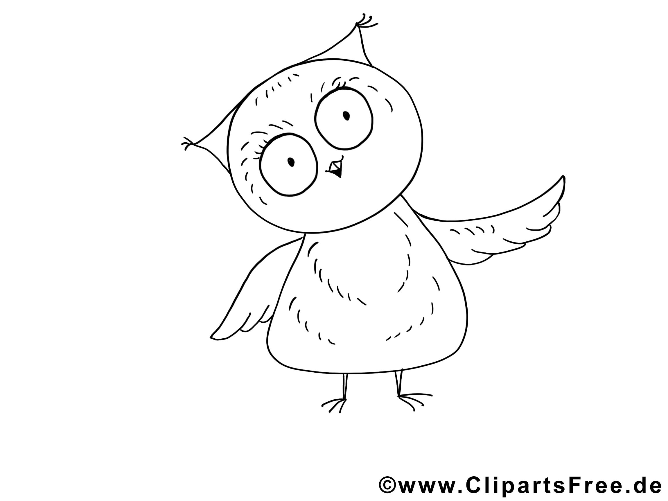 Hibou clipart à colorier – Animal dessins gratuits