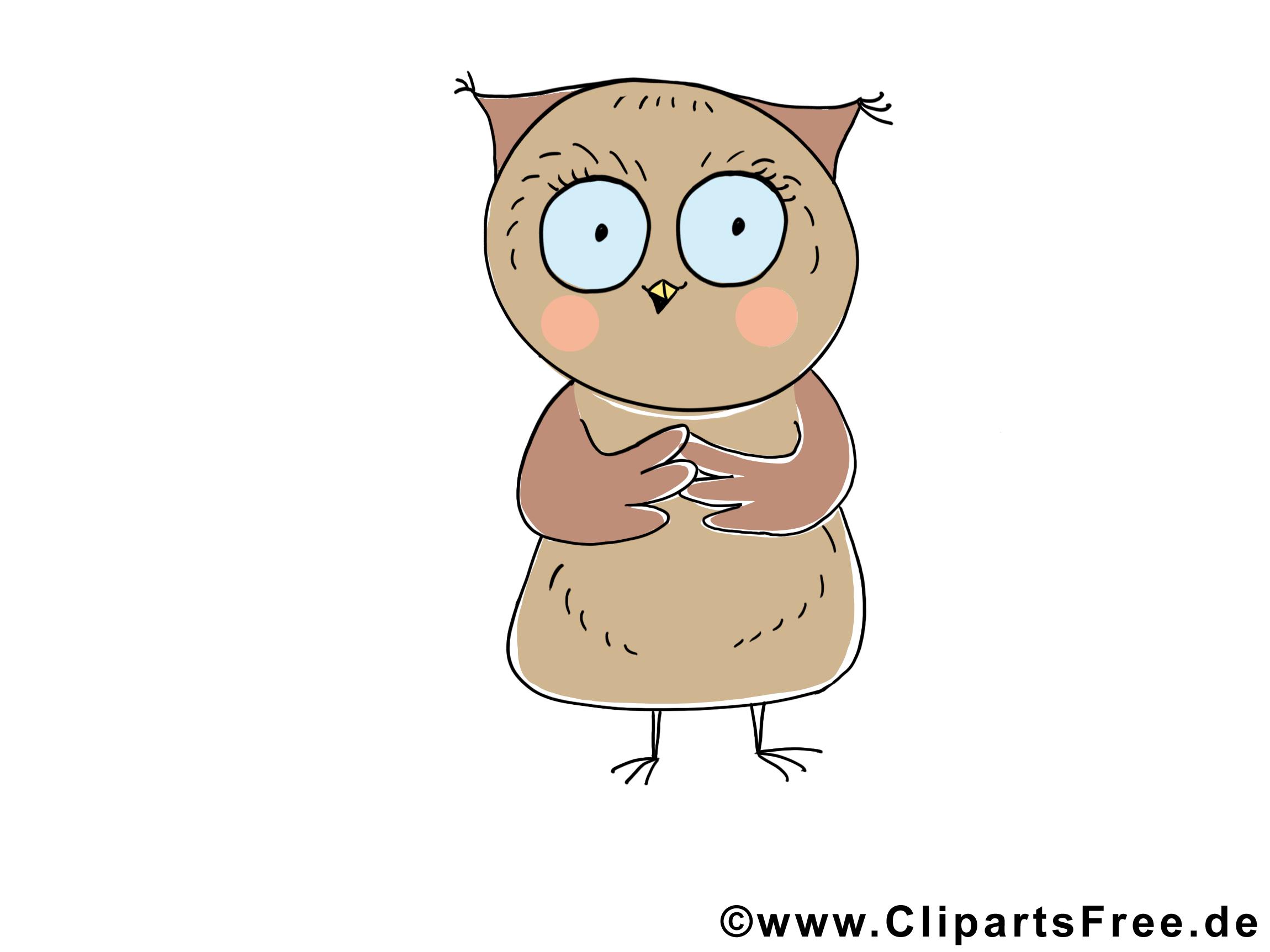 Hibou dessins gratuits – Animal clipart
