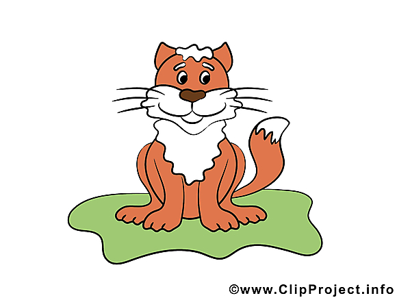 Lion illustration – Animal images