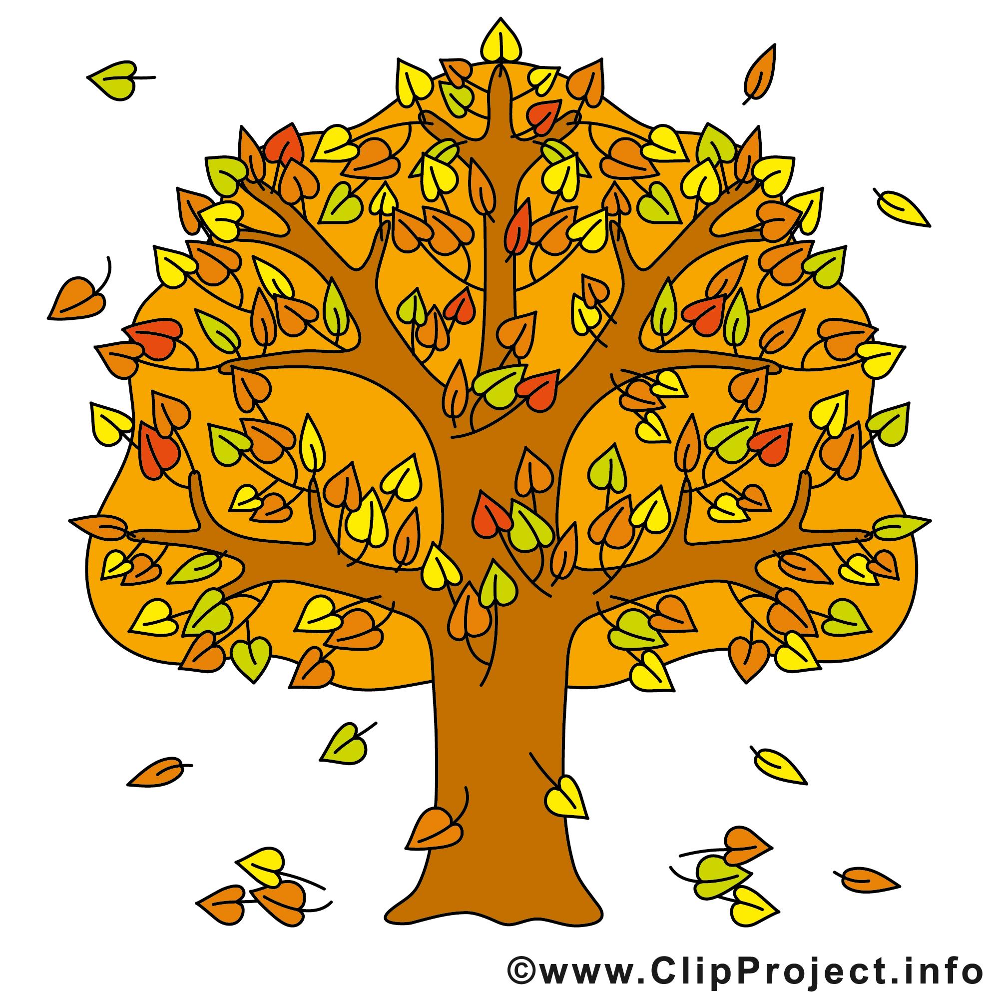 Arbre Images Gratuites Automne Clipart Automne Dessin Picture Image Graphic Clip Art Telecharger Gratuit