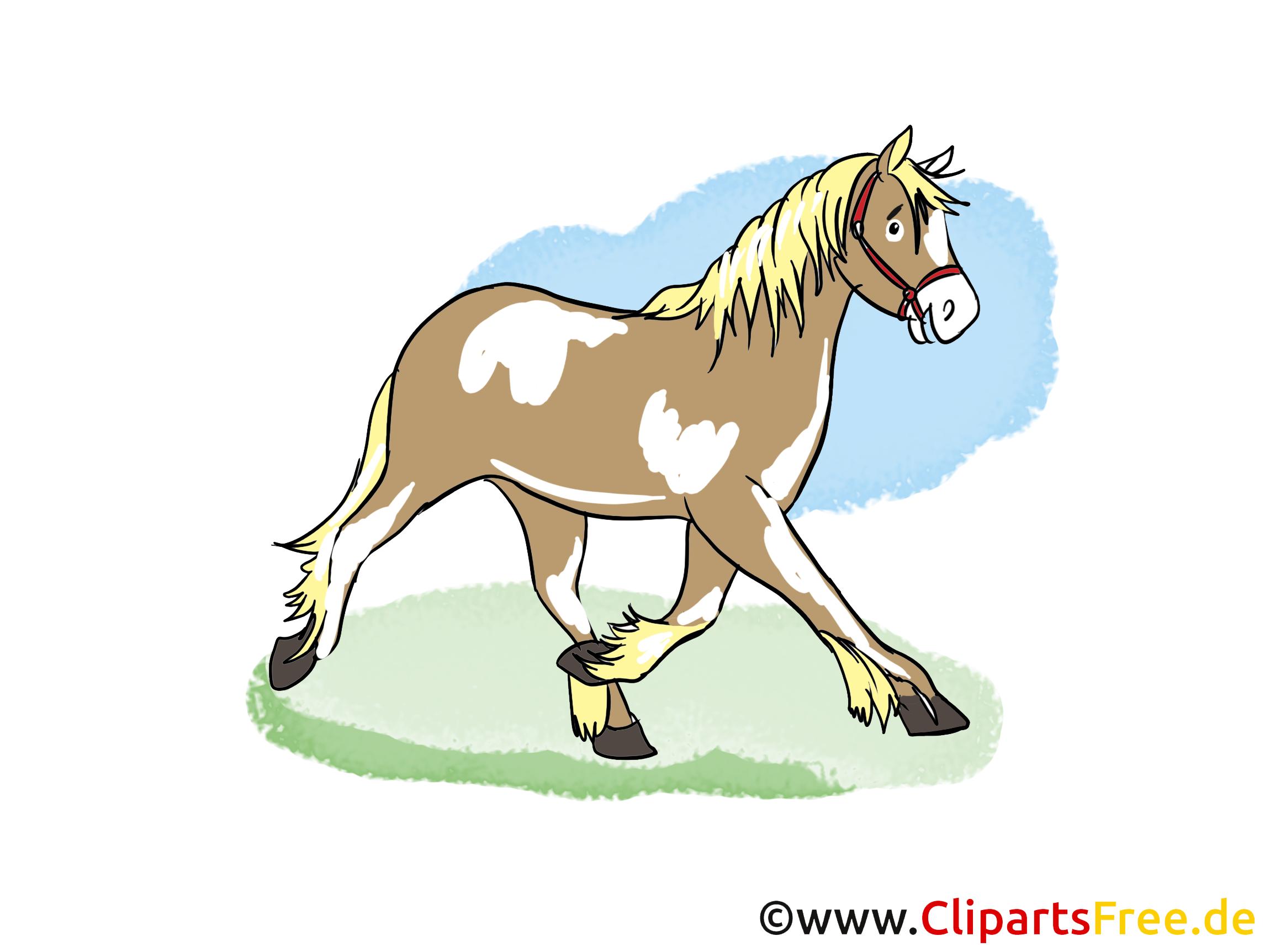 Clipart Cheval Gratuit illustration gratuite cheval clipart - chevaux dessin, picture