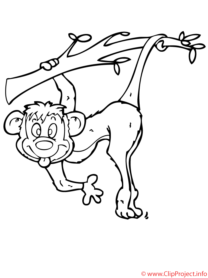 singe coloriage  animaux coloriages gratuit dessin