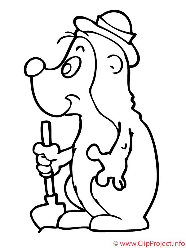 Taupe coloriage - Animaux coloriages gratuit dessin ...