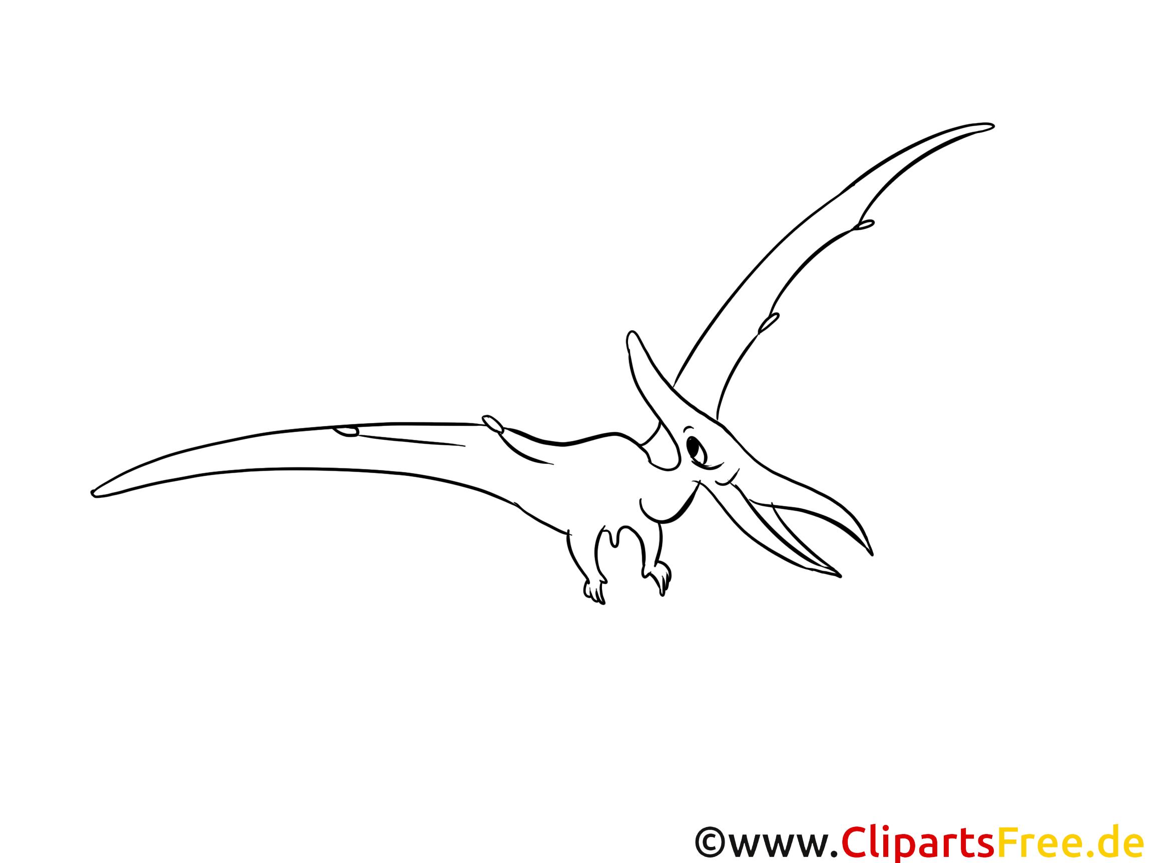 pt233rodactyle images � dinosaures gratuits 224 imprimer