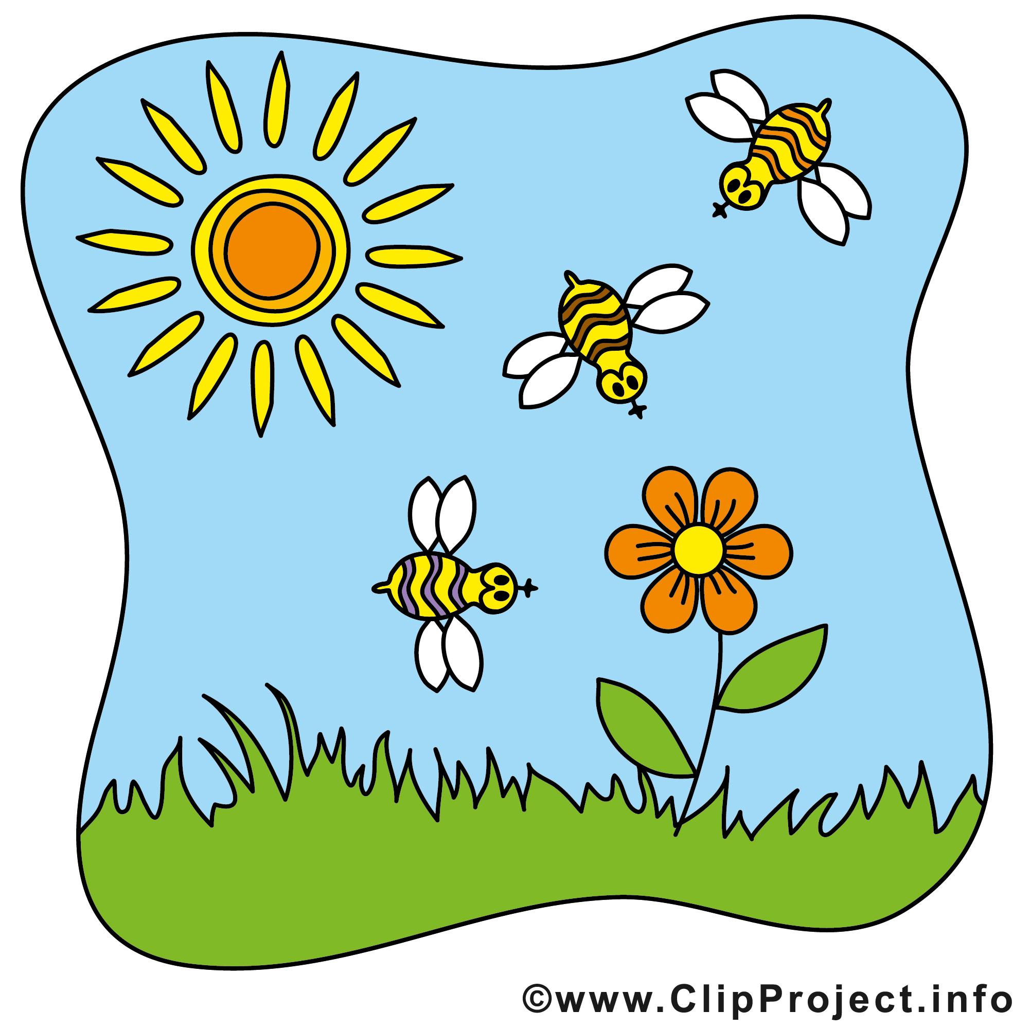 soleil clip art gratuit  Été images  Été dessin picture