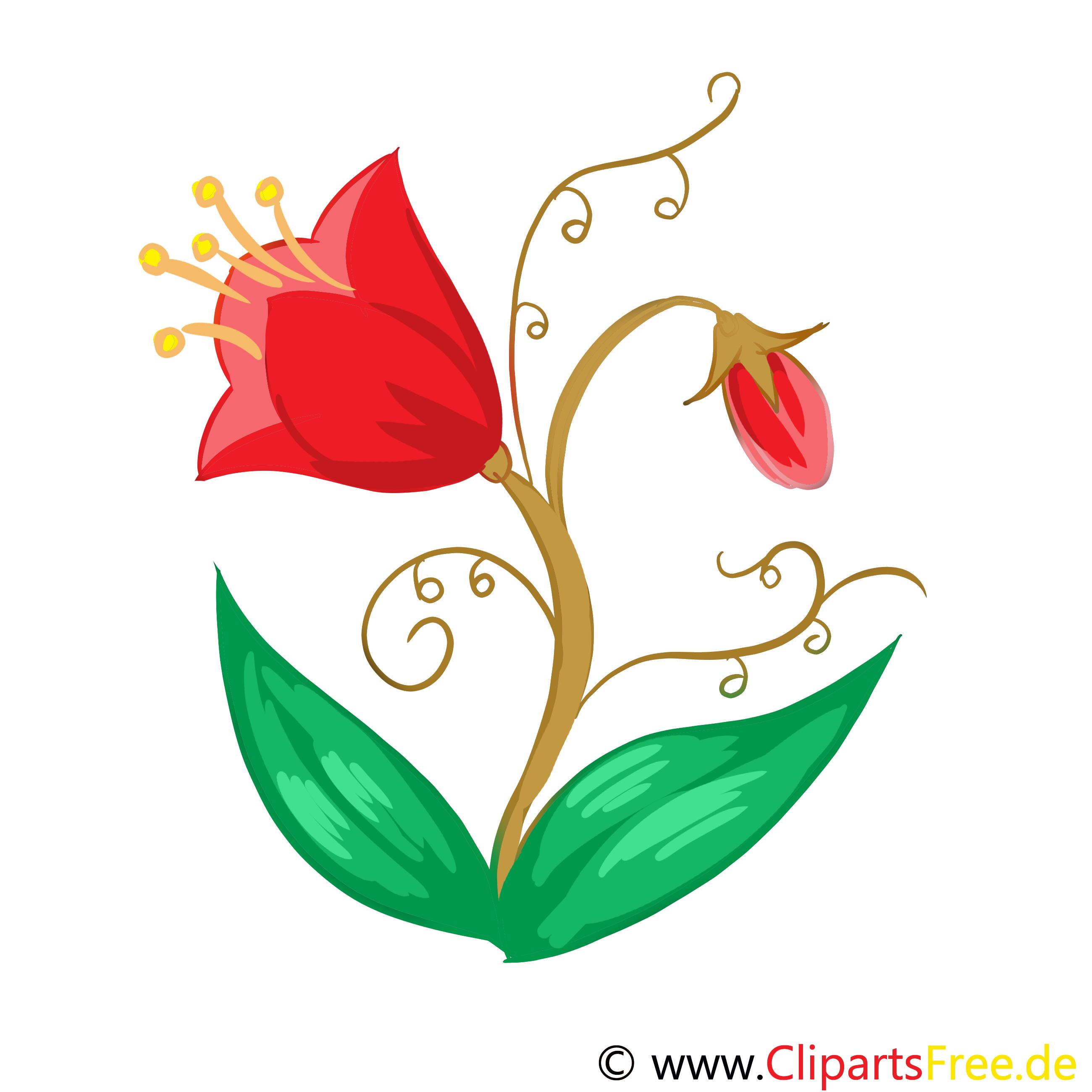 Tulipe clip art gratuit - Fleurs images - Fleurs dessin ...