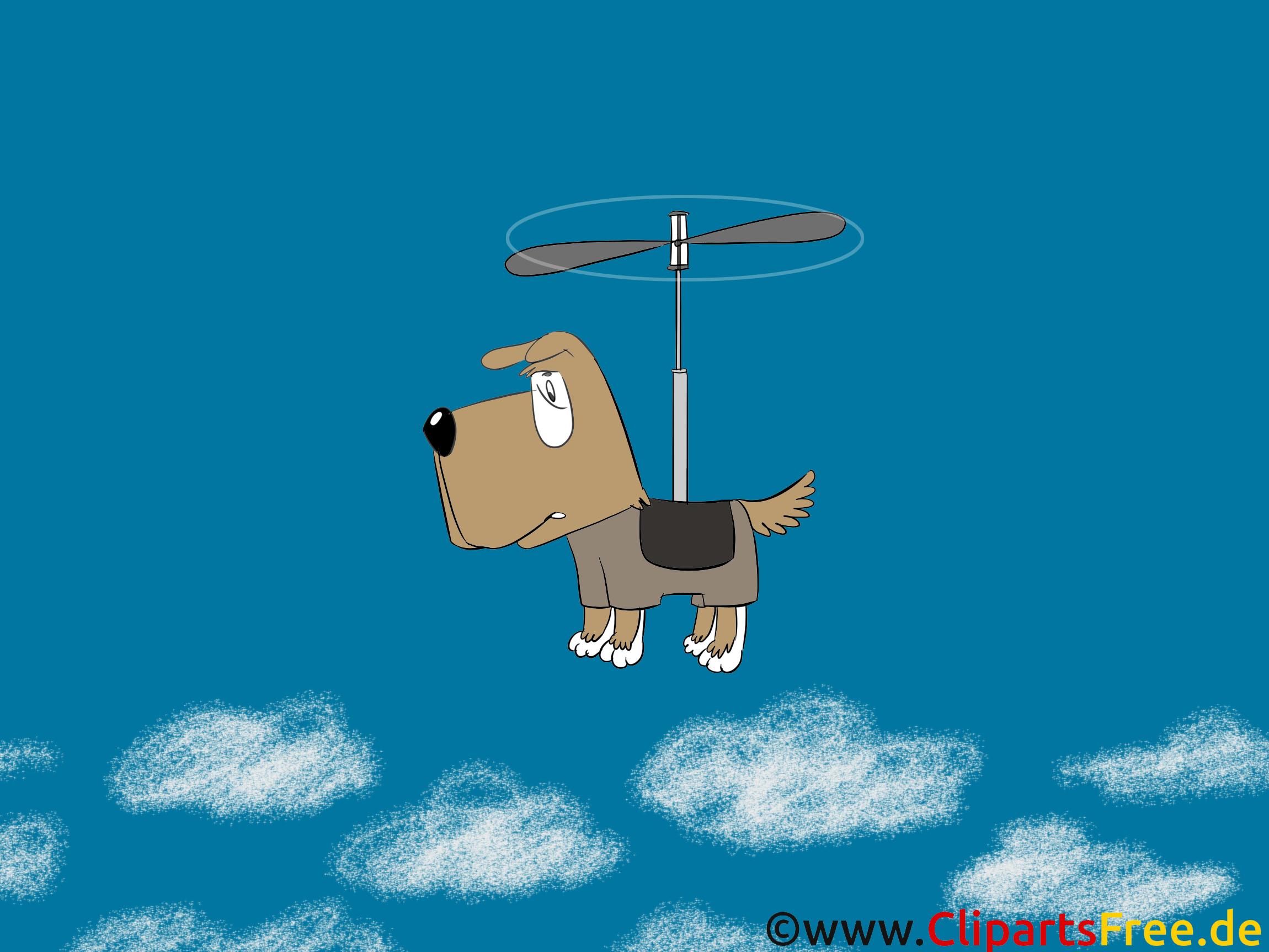Chien Volant chien volant fonds d'écran image à télécharger - fonds d écran