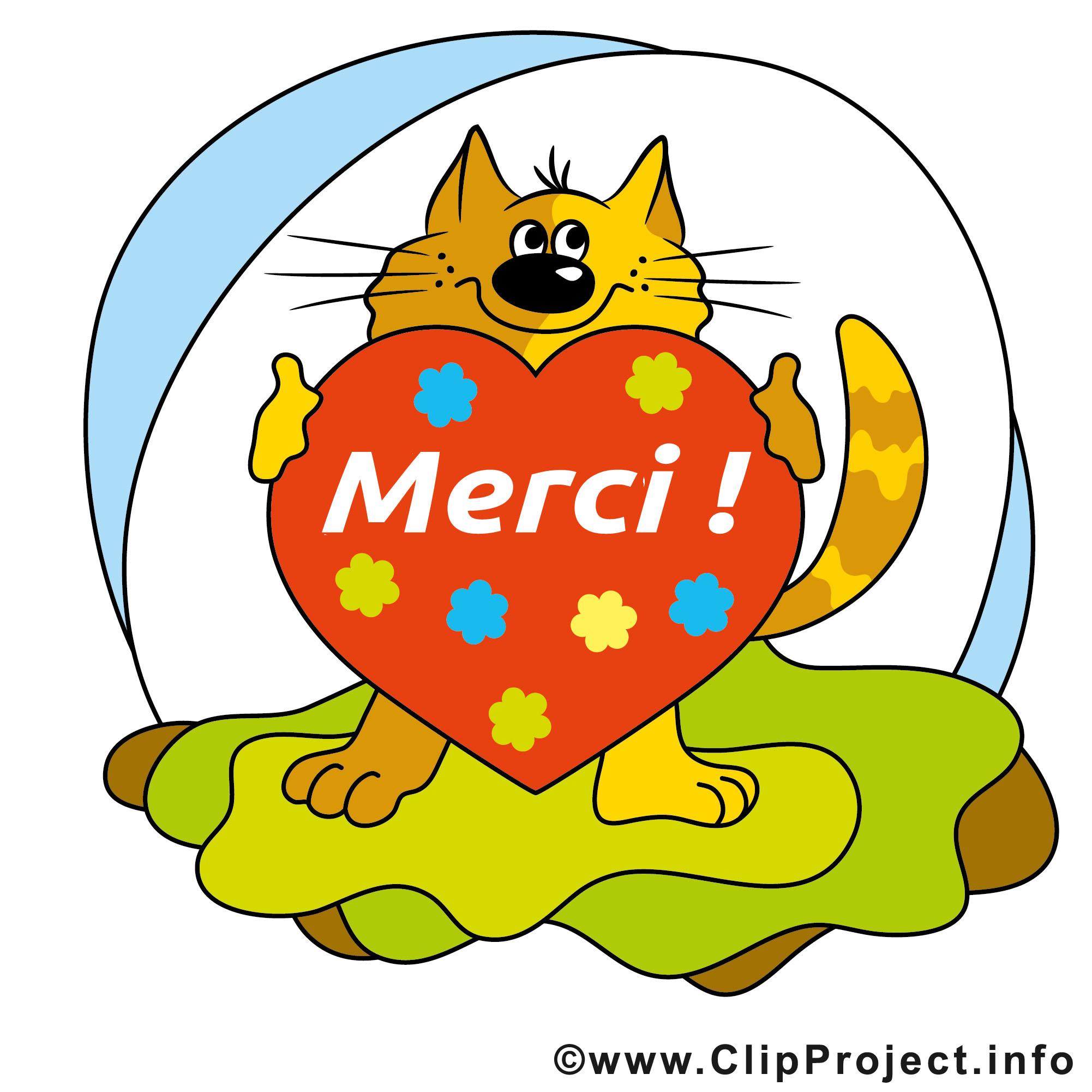 Chat coeur illustration gratuite merci clipart merci dessin picture image graphic clip - Images coeur gratuites ...